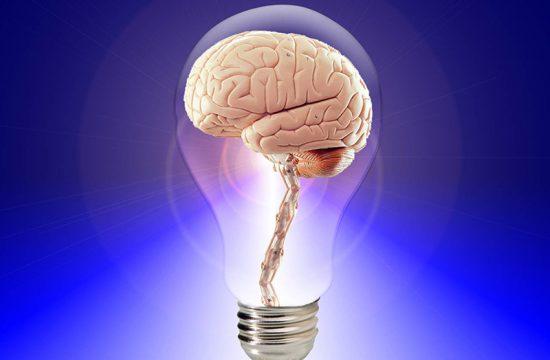 brain-2jpg